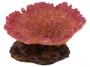 Dekorace AQUA EXCELLENT Mořský korál měkký fialový 9,5 x 8 x 4,5