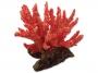 Dekorace AQUA EXCELLENT Mořský korál měkký růžový 8 x 7,5 x 7,5