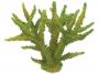 Dekorace AQUA EXCELLENT Mořský korál měkký zelený 16 x 12,5 x 13