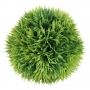 Dekorativní rostlina MECH 9 cm